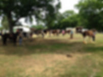 2016 LASC group cc pasture.jpg