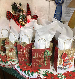 2020 Christmas Camp presents under the tree.jpg