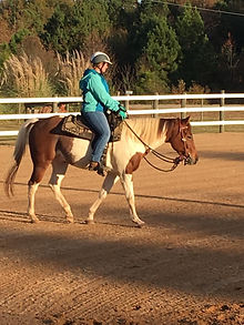 Boss under saddle 11-19 2.jpg
