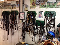 wix bridle racks.jpg