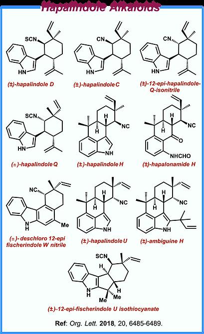 Alkaloids I.png