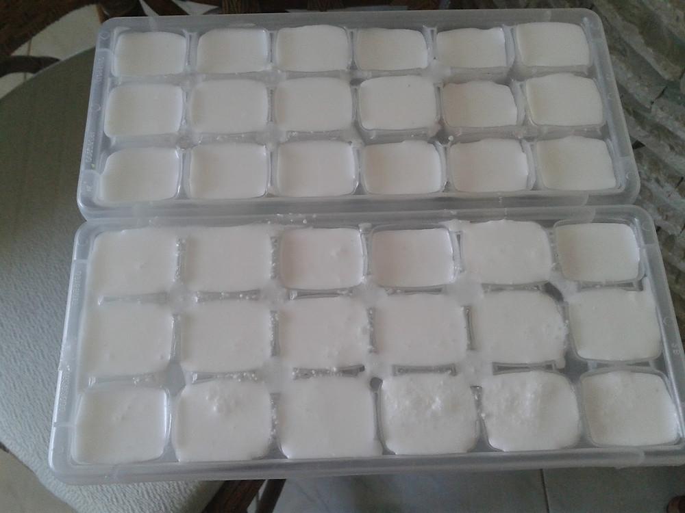 Resultado de imagem para leite de coco freezer