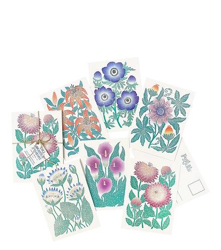 Set of 6 Postcards (version 4)