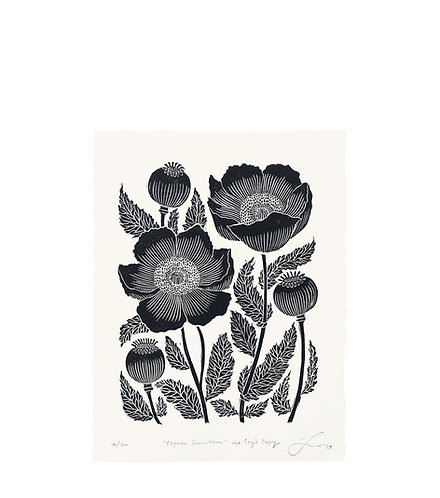 Papaver Somniferum II