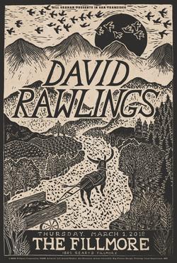 DAVID RAWLINGS