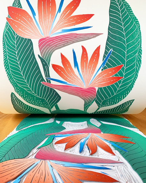 Bird of Paradise print reveal