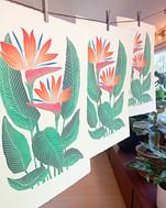 Prints hanging in art studio