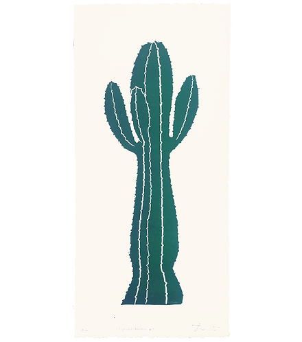 Euphorbia Lactea 2