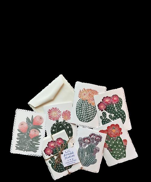 Set of 6 Blank Notecards w/ Envelopes