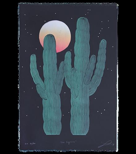 Dos Saguaros w/ Stars