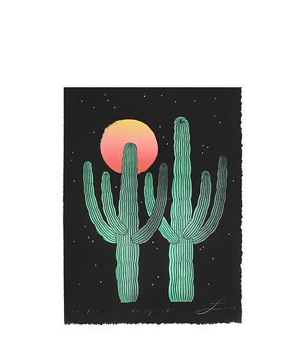 Dos Saguaros II w/ Stars