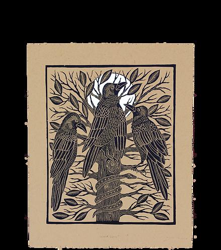 Night Crows