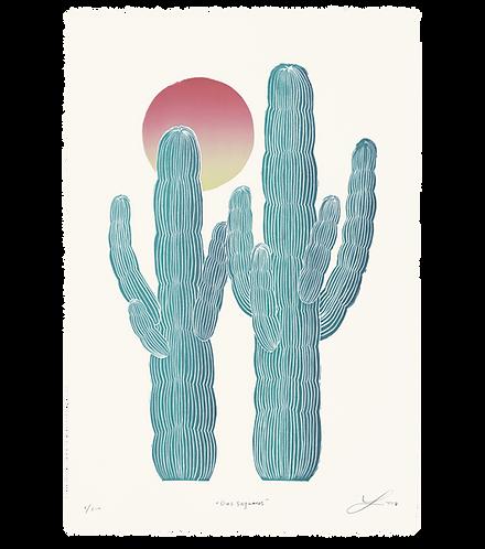 Dos Saguaros