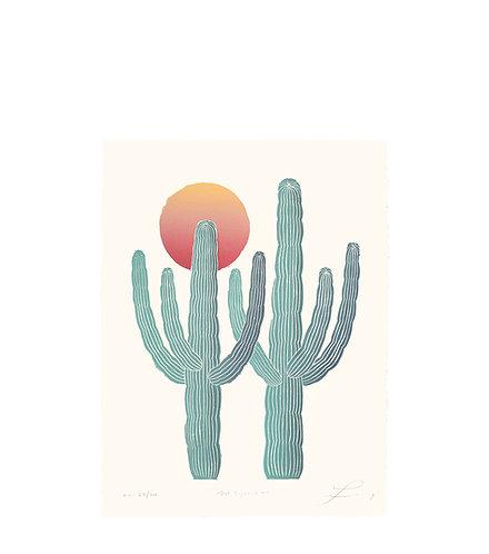 Dos Saguaros II