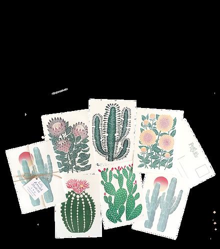 Set of 6 Postcards (version 3)