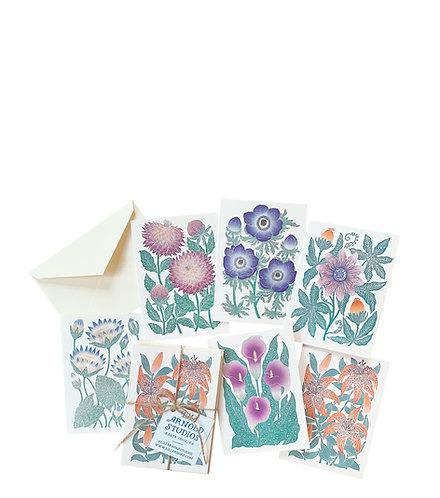 Set of 6 Blank Notecards w/ Envelopes (version 4)