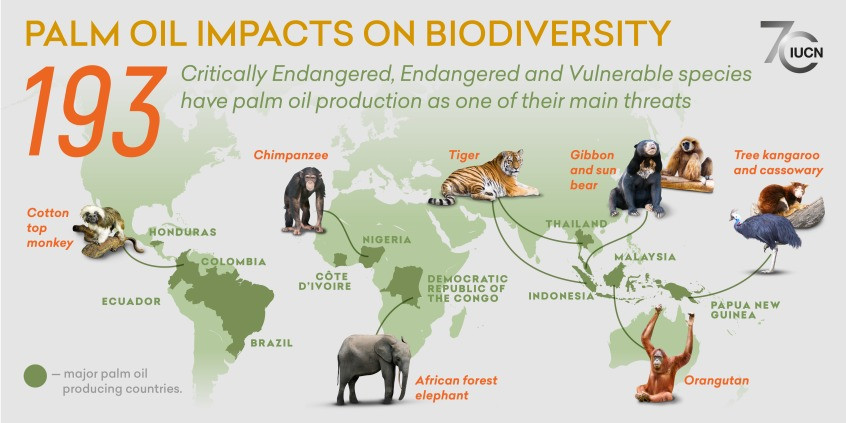 Red List, IUCN