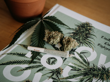 After Delta-8 Are Constructive Decisions On The Legality Of Cannabis An Improbable Goal For India?