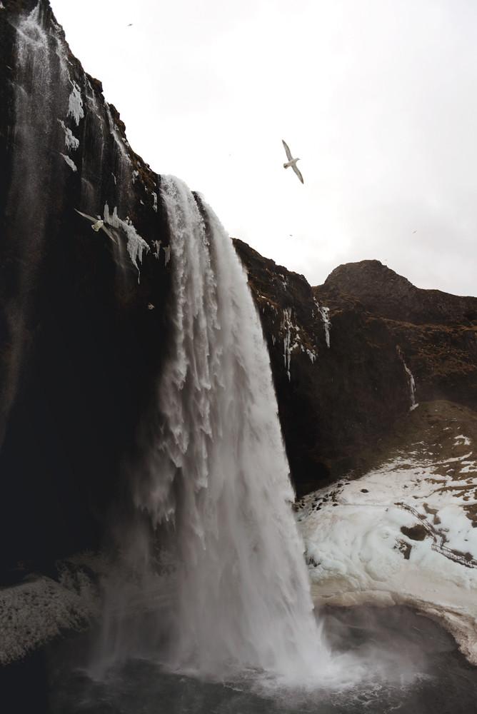 blog_Iceland_2015-75.jpg