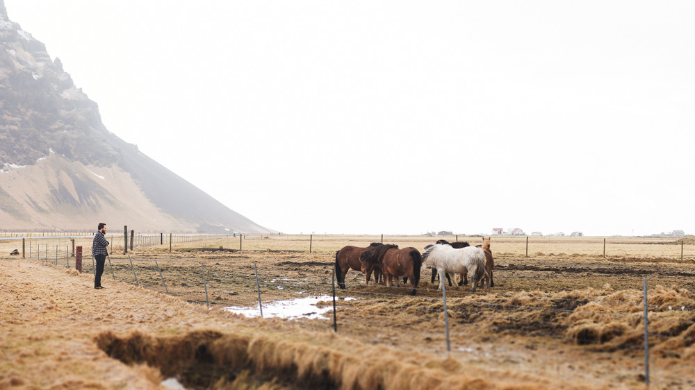 blog_Iceland_2015-91.jpg