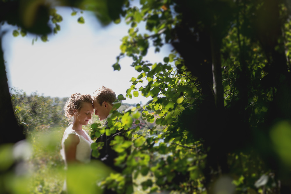 M+N_Wedding_2014_LVP-48.jpg