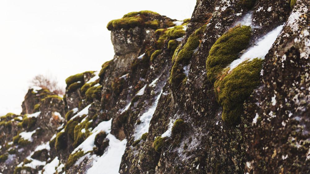 blog_Iceland_2015-39.jpg
