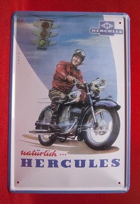 Placa Motorcycle