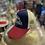 Thumbnail: Gorra Jurassic World