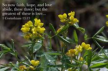 1 Corinthians 13 13.jpg