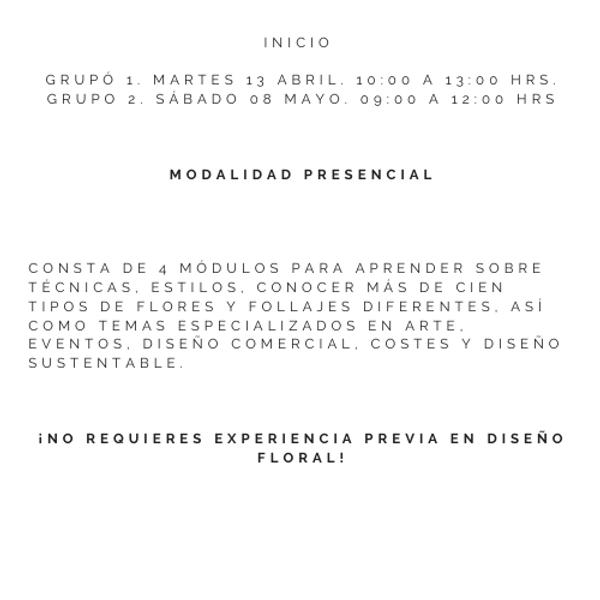 Pincelada Rosada Fotografía Logo (3).png