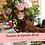 Thumbnail: Curso de formación de diseñador floral