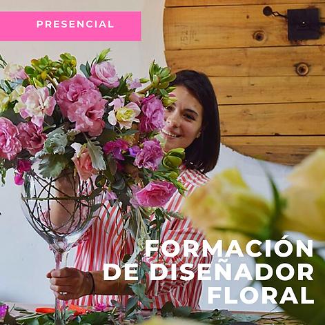 Rosa_Foto_Flores_Instagram_Publicación.
