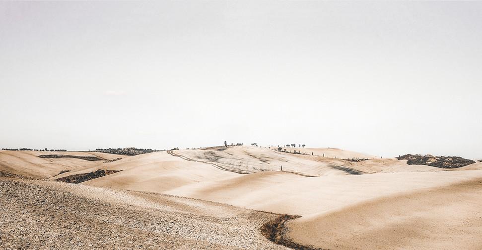 Paysage désert