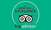 Trip-Advisor-COE.jpg