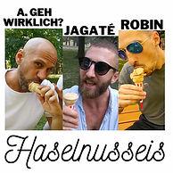 A.geh Wirklich_ - Haselnusscover Final klein.jpg