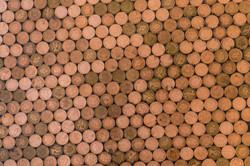 Bear Grills Amazing Penny Floor