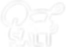 PINKSALT_Logo_TRUE-WHITE_190319.png