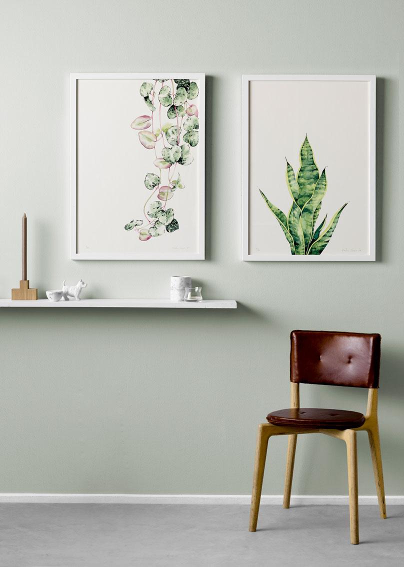 Botanic watercolours