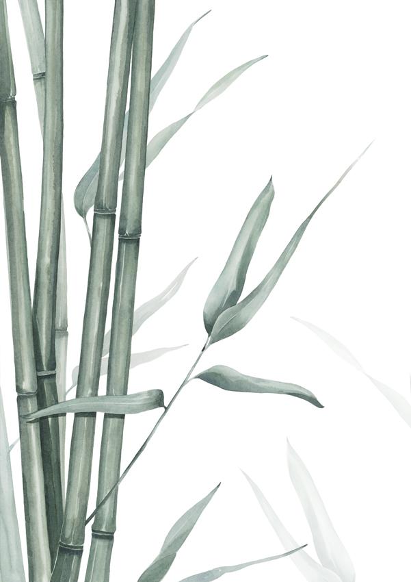 bamboo-print