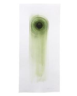 Stefan Gevers | Midnight sun green