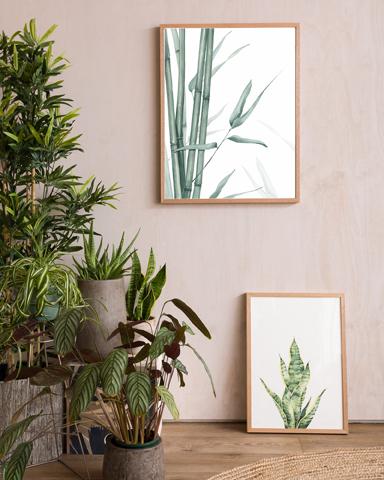 Paper Empire-botanicals