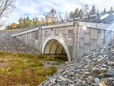 Article: Sustainability & Infrastructure