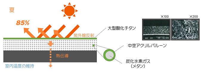 0section1_img2-コピー.jpg