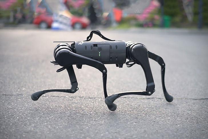 unitree-a1-robot-dog.jpg