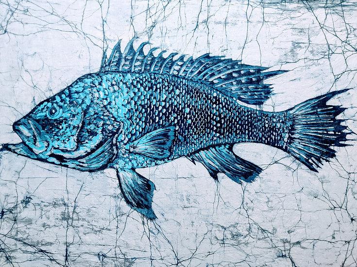 Black Sea Bass, 2021