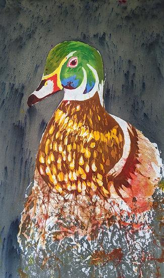 Wood Duck (Profile)