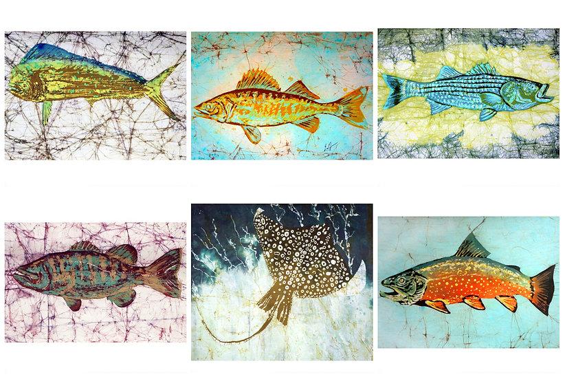 Sealife 8x10 Collection (6 prints)