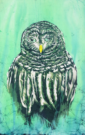 The Barred Owl