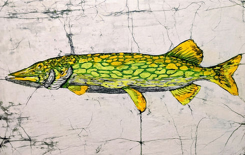 pickerel_edited.jpg