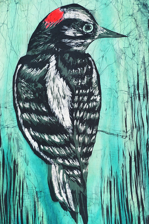 The Downy Woodpecker